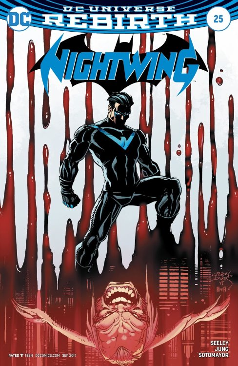 Nightwing #25 (Variant Cover B)